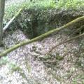abri bois-pierres-entrée de sape effondré