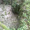 abri-sape effondré bois et pierres
