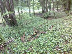 Cunel-Pnthieu,restes tranchées crenelées