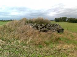 Sud-est Falaise;blok à 2 M.G /sur nord