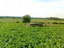 vers Coucy , sur l'Aisne.