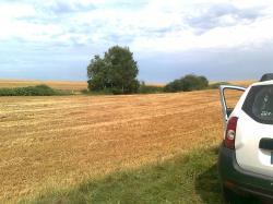 canon semide-cuve ds blés collines